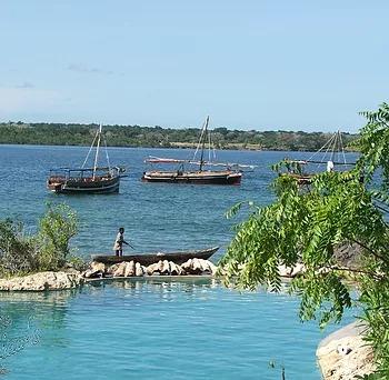 Lazy Lagoon at Charlie Claw's on Wasini Island