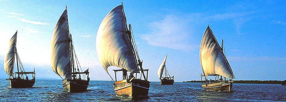 Dhow sailing in the Indian Ocean