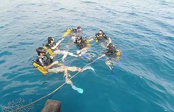 scuba-diving-lessons