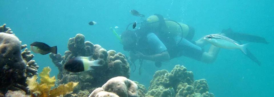 scuba-diving-slide1