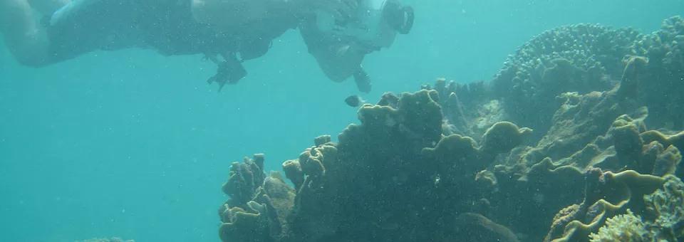 scuba-diving-slide3